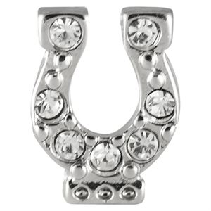 Picture of Crystal Horseshoe Charm